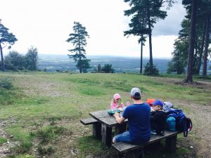 Family image of picnic by Leith Hill, Surrey